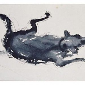 Yehoshua Front, Reclining Dog, 2007, pen, Indian ink and water on paper 29.5X21