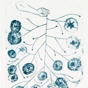 Noa Goren, Ranunculus, 2005, lithograph 42X32
