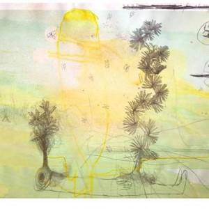 Eitan Ben-Moshe, Involuntary Tumors, 2005, marker and pens on computer print 21X35