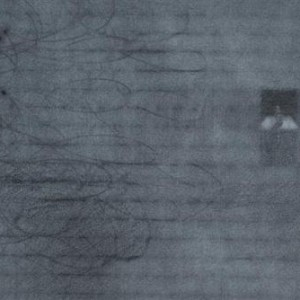 Untitled (detail), 2007 פencil and graphite powder on paper 30x40