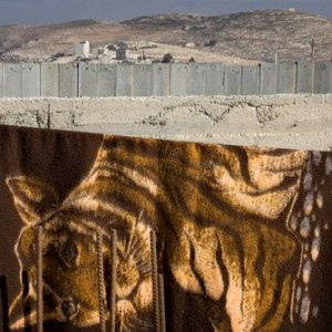 Untitled (Hizma village West Bank) 2005, Lambda print 100x150