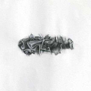 Dina Kahana Gueler, Ensemble, no.3, 2010, Graphite on paper 56x75 cm