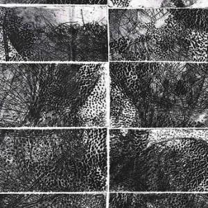 """צמחיית תענוגות, 2009 תצריב, אקווטינטה ותחריט יבש על נייר 32X50 ס""""מ"""