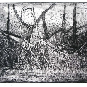 Leora Wise, The End of the Line, 2010, Etching on paper 56x76 cm