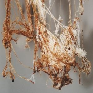 ירושלים של מעלה (פרט) - אסתר חיה, 2008, חוטי פשתן ופילואסטר, סוכר מוקרם, 150x150x200