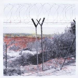 ללא כותרת - דביש בן- משה מירב, 2007-2008, צילום מטופל, צבעי עפרון שמן על נייר, 100x100