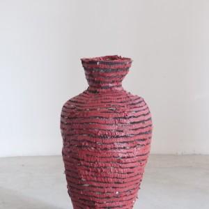 ואזה אדומה, 2011