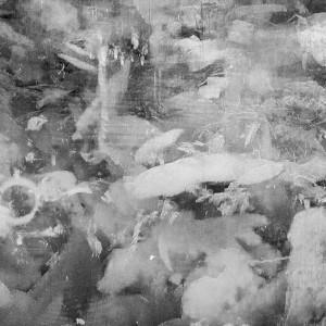 "Nir Evron, Dreyfus/Melies (""Baggare entre journalistes""), 2014, B/W pigment inkjet on archival paper, 18X24 cm"