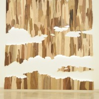 Liat Livni Veneer Skies 2011 Veneer , wood and light 250x260 cm.