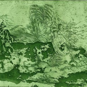 Wild behavior at green, 2007 mixed etching technique 17 X 24 cm