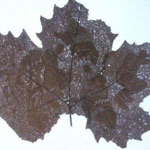 Ronit Agassi, Grid: Crossed Lines, 2006, a leaf perorated by needle 19X24