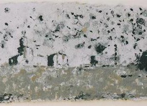 Starlings, 2006 crushed paper on paper 32x53