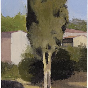Cypress, 2005 oil on canvas 27x20 cm