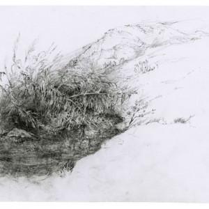 ללא כותרת , 2008 עט על נייר 22x30 סמ