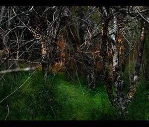 """תנודות 9# - פרידמן אלעד חגי, 2009 , הדפס סימבוליק, 158X77 ס""""מ"""