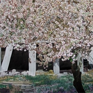 Almond Tree, water colors 70 x 50 cm