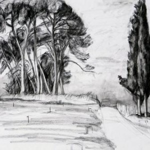 Drawing ,2000-2002, charcoal on paper 50x70