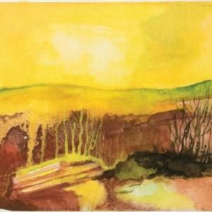 """סלעים חיים, 2007 צבעי מים על נייר 8.4X9.1 ס""""מ"""