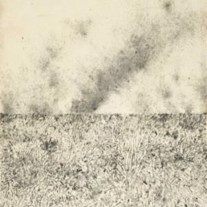 """גל וינשטיין, מן הסדרה, """"עמק החולה"""", 2004, צמר פלדה על נייר 73X100 ס""""מ"""