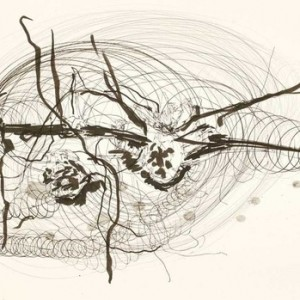 """Yehudit Sasportas, From the """"Magnetic Hearts"""" series no. 70, 2008, Pencil and ink on paper 42x59.5 cm"""