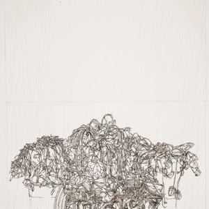 """שרון פוליאקין, תל רקפות, 2010, דיו ועיפרון על נייר 50X66 ס""""מ"""