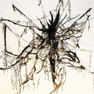 """עינת אמיר, בין לבין, 2010, הדפס-פלוק, הדפס-רשת ורישום על קיר 150X100 ס""""מ"""