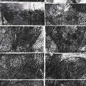 """חיה אסתר, צמחיית תענוגות, 2009, תצריב, אקווטינטה ותחריט יבש על נייר 32X50 ס""""מ"""