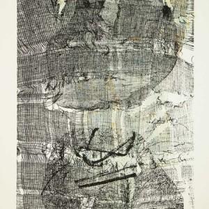 """התעוררות, 2009 הדפס-רשת על נייר 30X42 ס""""מ"""