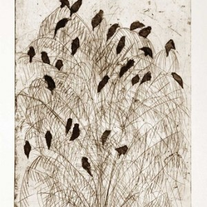 Ruth Tal, Birds on Top no. 2, 2010, Drypoint, soft-ground and aquatint on paper 50.5x37 cm