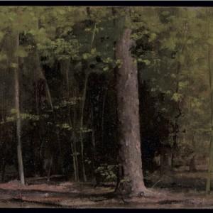 Grünewald - Farber Eldar, 2007 , oil on canvas, 20X27 cm