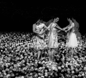 "Lee Yanor Forget Me Not no. 2 (after ""Nelken"" by Pina Bausch) 2011, B&W photograph, 3D print 120X270 cm"