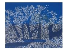 עצים בכחול, monotupe
