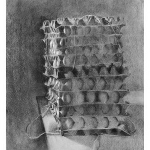Egg Cartons, 2002 charcoal and pastel on tinted paper 60.5x46 cm