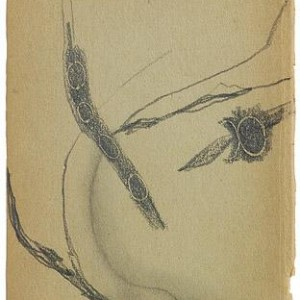 Assaf Romano, ...and a Thought of a Cat 1999 pencil on found paper, 17x10.5 cm