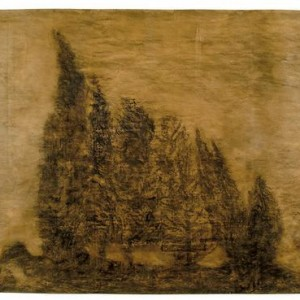Dror Ben Ami, Untitled, (Group of Cypresses), 2004, charcoal on brown paper 220x300 cm