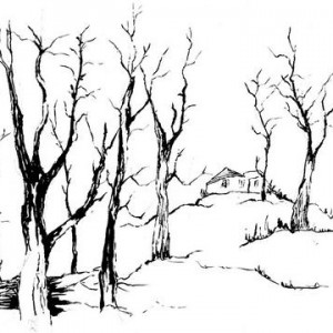 Dutzi Schainfeld, Trees in Jerusalem, 2001, ink with brush 24x34 cm