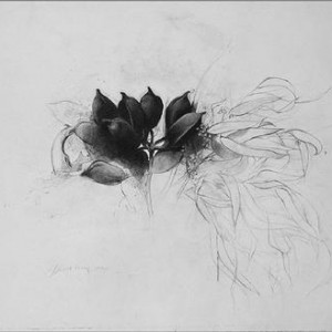 Israel Hershberg, Dried Bouquet, 1992, pencil on paper 56.5x68 cm