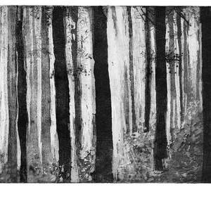 Chana Goldberg, Untitled, 2004, etching 18x34.5 cm