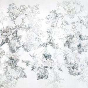 קוץ, 2005 עפרונות צבעוניים על נייר