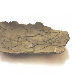 רעיה רדליך, קערה שטוחה, 1998 חומר לחיצה בתבנית 8X48X40