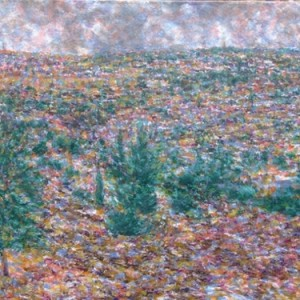 ירושלים - מבט מדרום ] שץ שאול, 2007, שמן על בד, 103x73