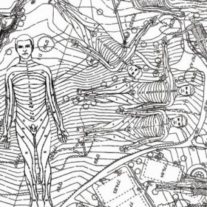 גן הורדים (פרט) - רבסקי יוליה, 2008, טכניקה מעורבת, 150x200
