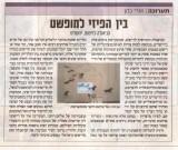 """ישראל היום- """"בין הפיזי למופשט"""""""