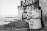 אלישבע שקד, מתוך סדרת מלח הארץ, 2014, פילם שחור לבן במצלמה אנלוגית