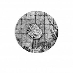 The Sensitive Plant, 2014, graphite on paper, 50X35 cm