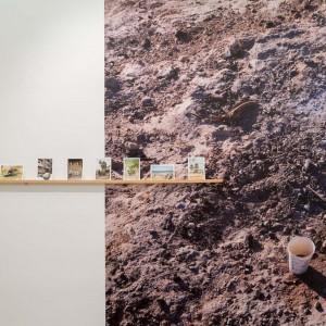 יעקב ישראל, צילום מתוך התערוכה, 2017