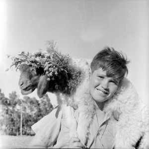 Ari Glas, Feast of First Fruits - Menahe Bernstein with a Sheep on Shoulders, 1952