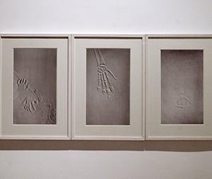 Paper Works (form the installation Paper Works) (2008), Dror Daum, color print on Baryte paper, 44x26 cm. photography: Shlomo Seri