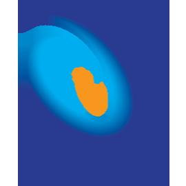 pais-logo-270x270